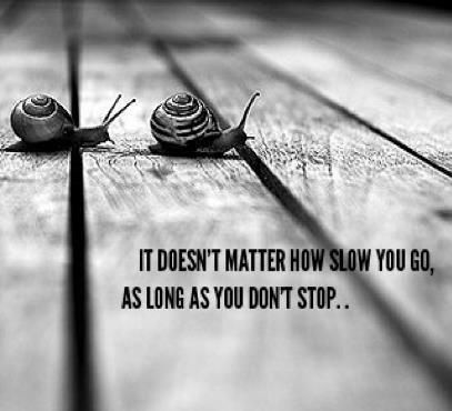 It does not matter how slow you go as long as you do not stop. - Confucius
